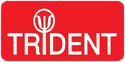 Trident Building & Roofing